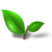 tea-plant-leaf-icon